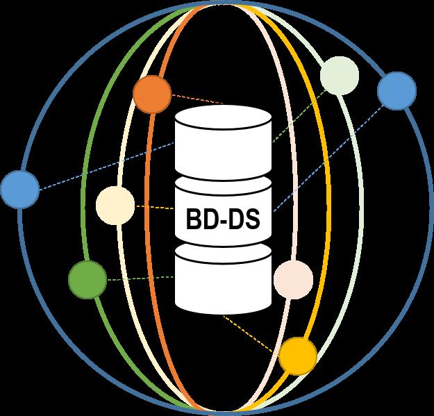 BD-DS project logo